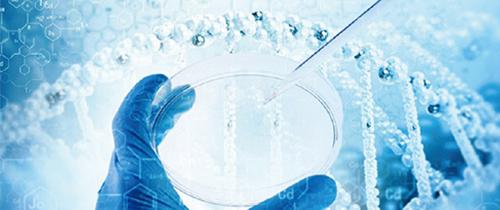 子痫前期检测试剂盒/尿蛋白检测试剂盒/补体因子D检测试剂盒